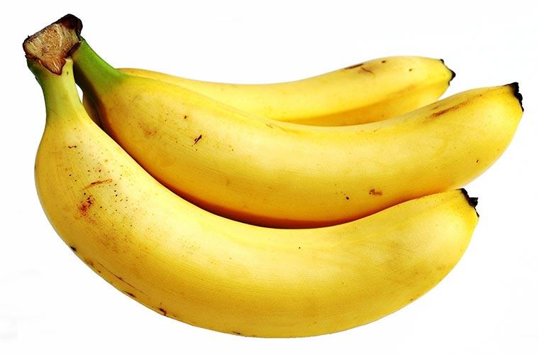 バナナの栄養 犬のバナナ