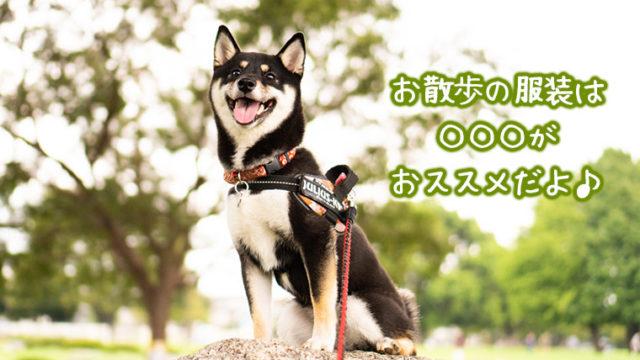 犬の散歩と服装 つなぎ ファッション