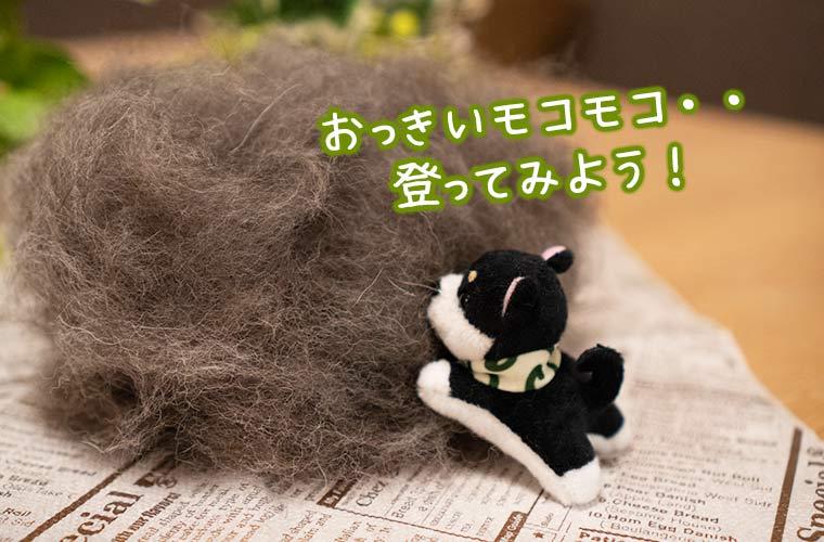 柴犬のマスコット
