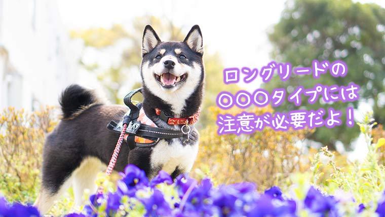 フレキシブル ロングリード 犬
