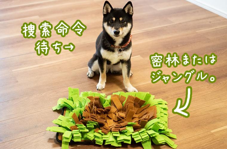 犬のおもちゃ ノーズワーク 草