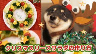 クリスマスリース 料理 サラダ