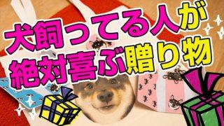 犬を飼っている人へのプレゼント