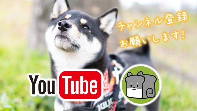youtube 柴犬 shibainu