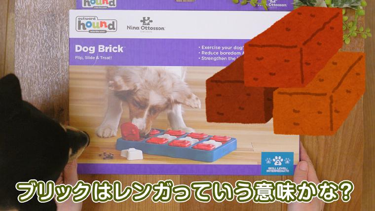 dog brick