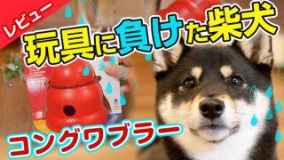 コングワブラー 犬の知育玩具
